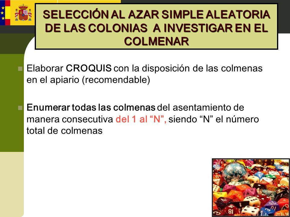 SELECCIÓN AL AZAR SIMPLE ALEATORIA DE LAS COLONIAS A INVESTIGAR EN EL COLMENAR Elaborar CROQUIS con la disposición de las colmenas en el apiario (reco