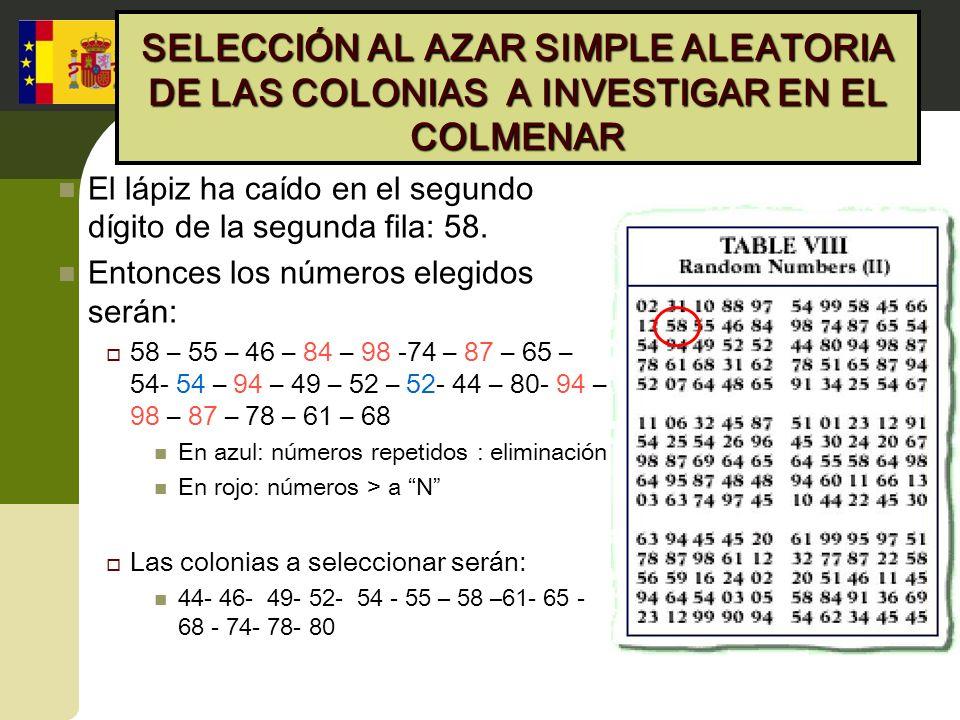 SELECCIÓN AL AZAR SIMPLE ALEATORIA DE LAS COLONIAS A INVESTIGAR EN EL COLMENAR El lápiz ha caído en el segundo dígito de la segunda fila: 58. Entonces