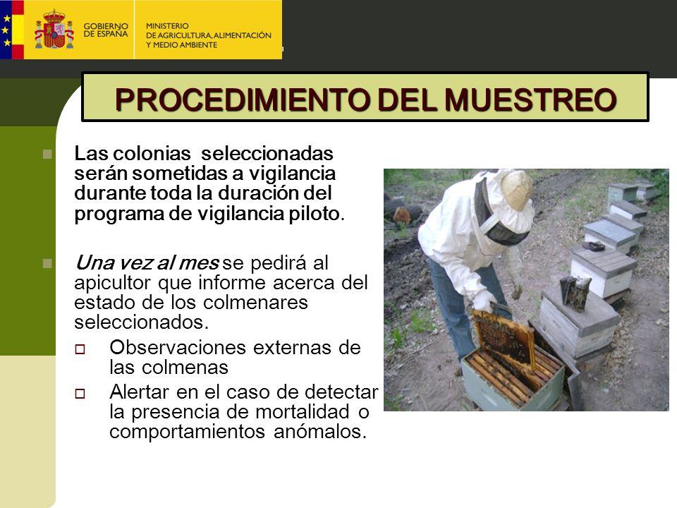 Las colonias seleccionadas serán sometidas a vigilancia durante toda la duración del programa de vigilancia piloto. Una vez al mes se pedirá al apicul