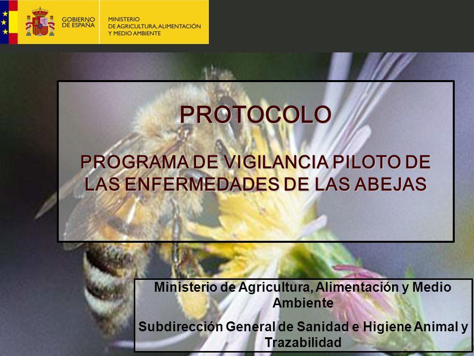 Ministerio de Agricultura, Alimentación y Medio Ambiente Subdirección General de Sanidad e Higiene Animal y Trazabilidad PROTOCOLO PROGRAMA DE VIGILAN