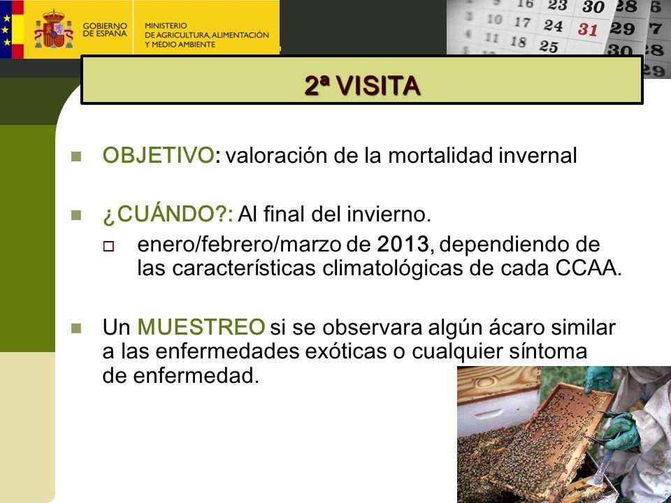 OBJETIVO: valoración de la mortalidad invernal ¿CUÁNDO?: Al final del invierno. enero/febrero/marzo de 2013, dependiendo de las características climat