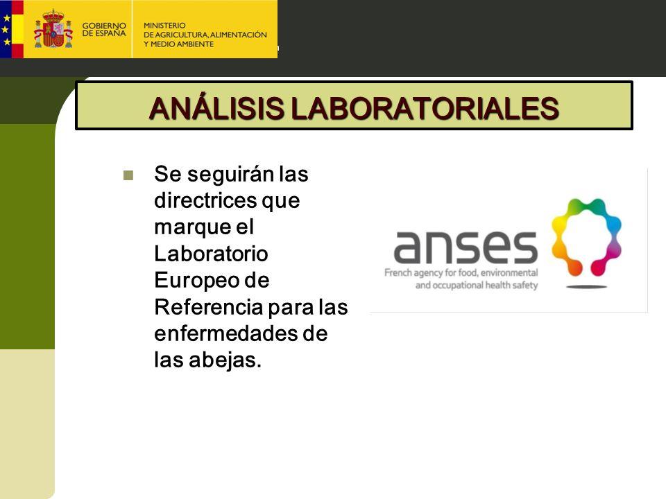 ANÁLISIS LABORATORIALES Se seguirán las directrices que marque el Laboratorio Europeo de Referencia para las enfermedades de las abejas.