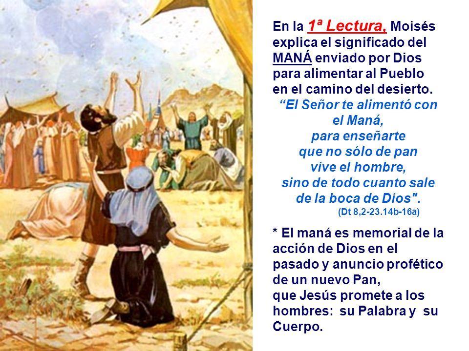 En la 1ª Lectura, Moisés explica el significado del MANÁ enviado por Dios para alimentar al Pueblo en el camino del desierto.