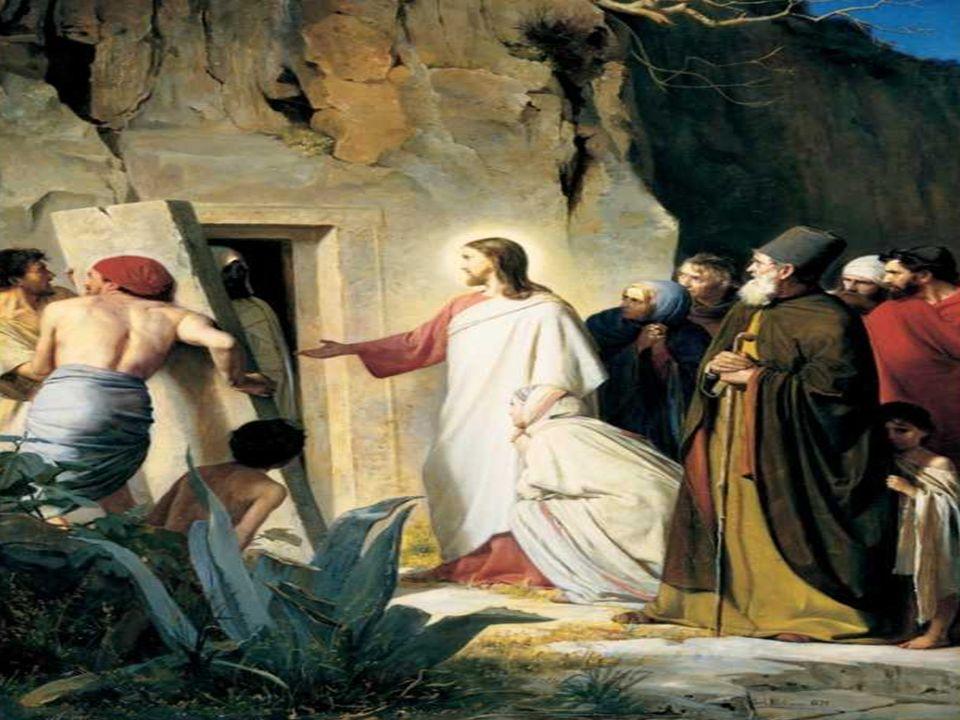 En el Evangelio, Jesús se presenta como el SEÑOR DE LA VIDA.