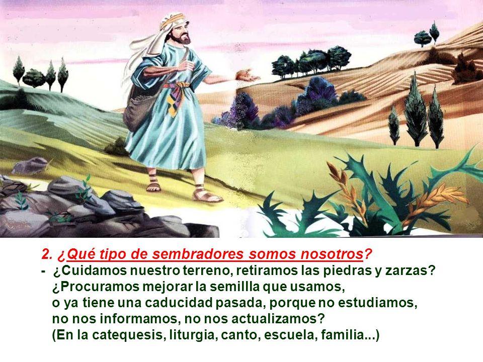 + La Parábola nos propone TRES PERGUNTAS: 1. ¿Qué terreno somos nosotros? Muchas veces echamos la culpa al PREDICADOR (