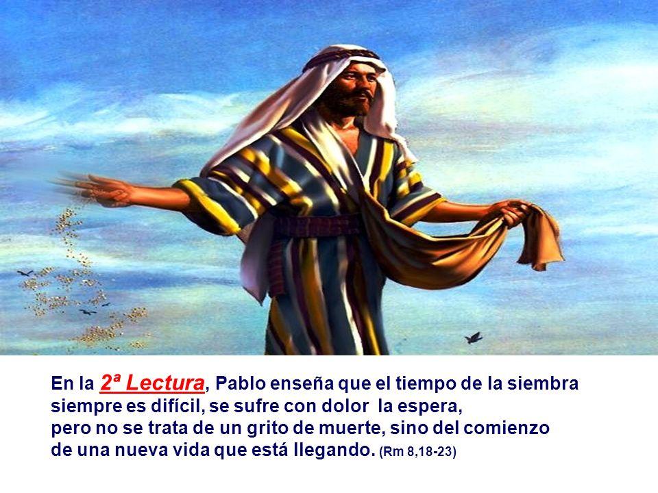 En la 1ª Lectura, el Profeta compara la Palabra de Dios a la LLUVIA.