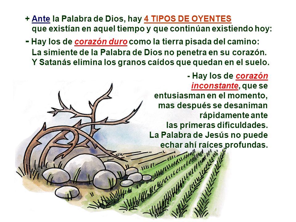 JESÚS responde con la Parábola: A pesar de los obstáculos, la simiente no pierde su fuerza. Dios lanza su simiente en todas las direcciones, no rechaz