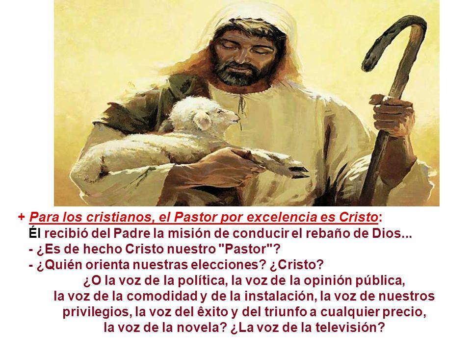 + Para los cristianos, el Pastor por excelencia es Cristo: Él recibió del Padre la misión de conducir el rebaño de Dios...