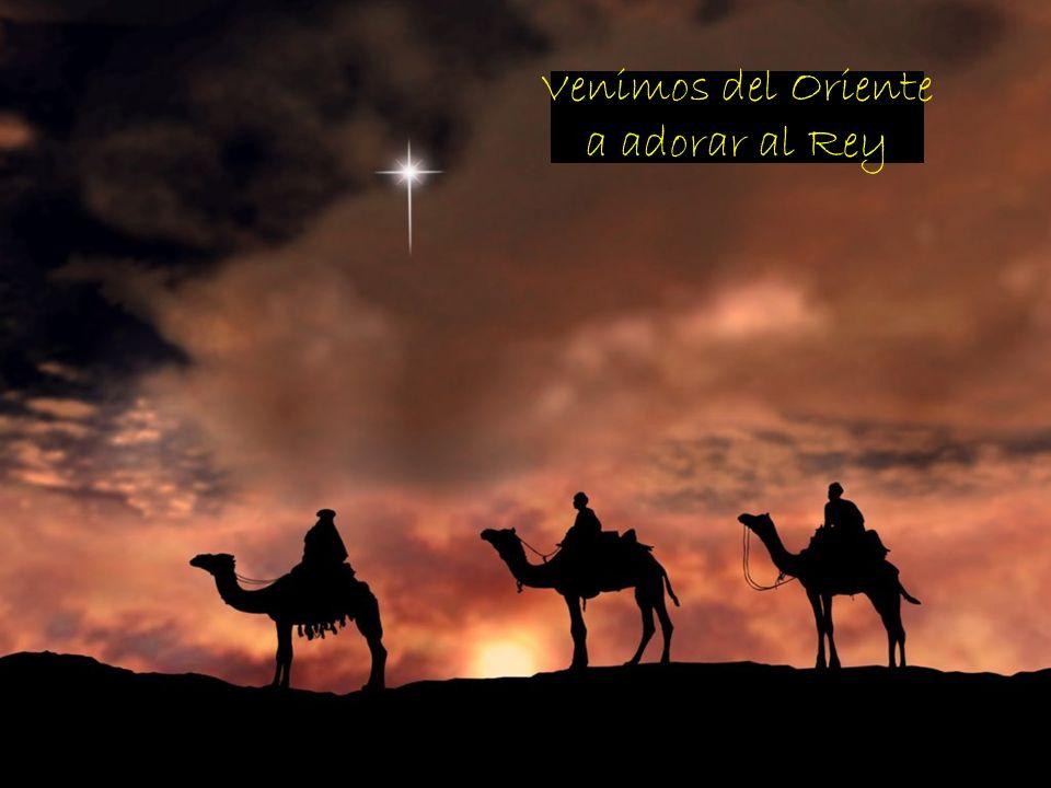 El Camino seguido por los Magos para encontrar a Jesús es el camino a seguir por todos nosotros, en nuestra búsqueda de Dios: - Están atentos a las se