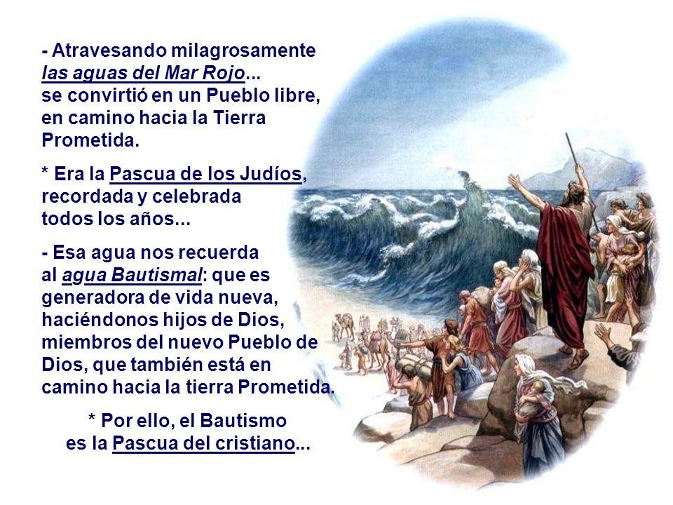 b) La LIBERACIÓN : (Ex 14,15-15,1) Dios después de haber escogido a ABRAHÁN, como Padre de un gran Pueblo escoge a MOISÉS para concienciar a ese puebl