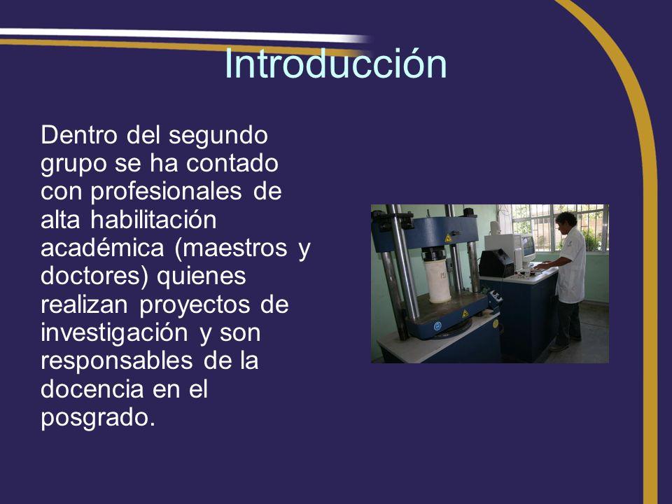 Introducción Dentro del segundo grupo se ha contado con profesionales de alta habilitación académica (maestros y doctores) quienes realizan proyectos