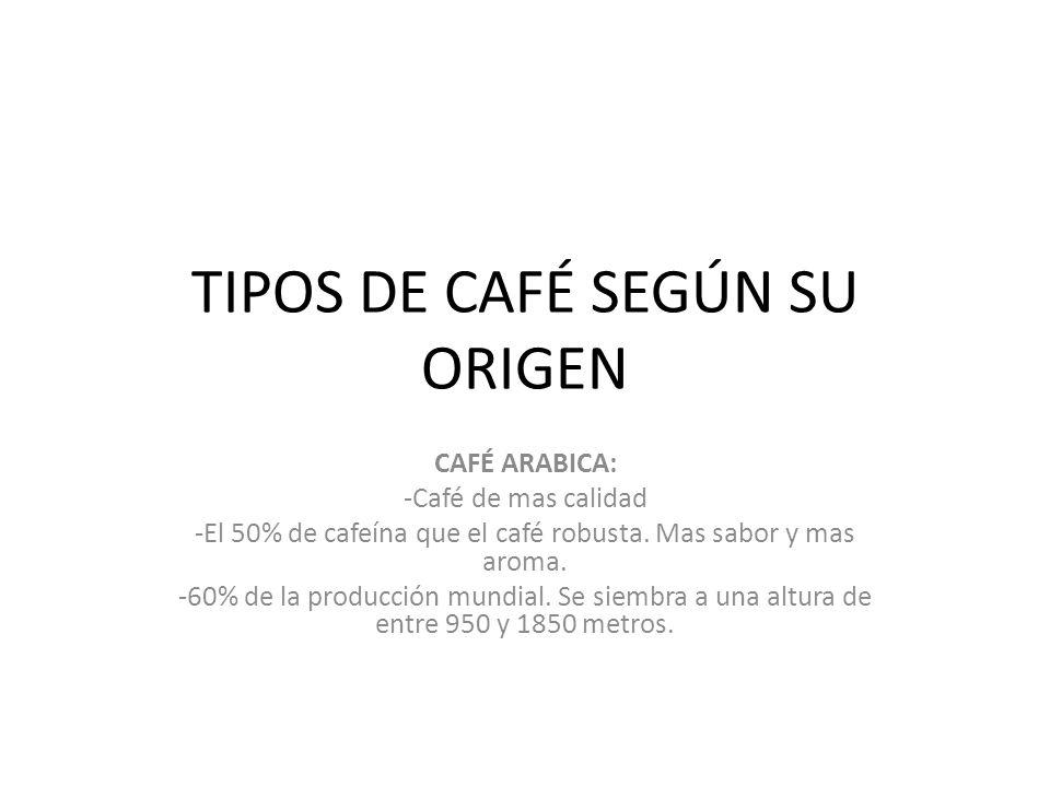 TIPOS DE CAFÉ SEGÚN SU ORIGEN CAFÉ ARABICA: -Café de mas calidad -El 50% de cafeína que el café robusta. Mas sabor y mas aroma. -60% de la producción