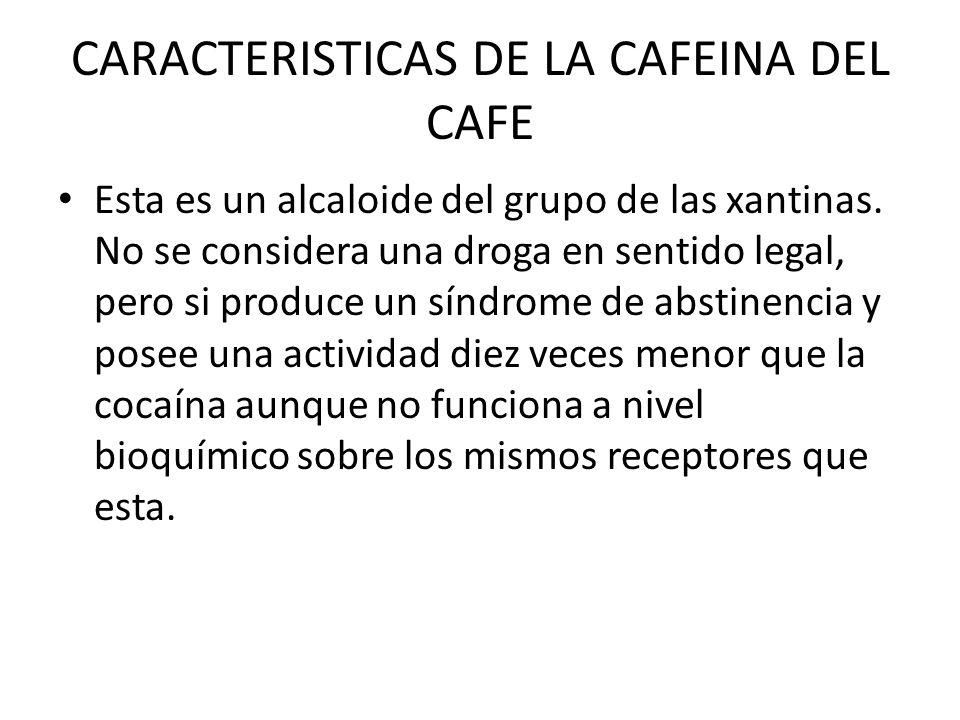 CARACTERISTICAS DE LA CAFEINA DEL CAFE Esta es un alcaloide del grupo de las xantinas. No se considera una droga en sentido legal, pero si produce un