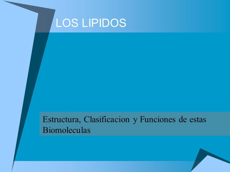 LOS LIPIDOS Estructura, Clasificacion y Funciones de estas Biomoleculas