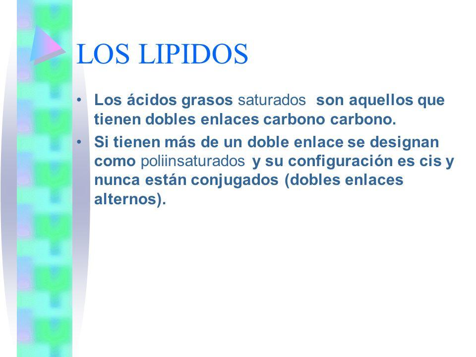 LOS LIPIDOS Los ácidos grasos saturados son aquellos que tienen dobles enlaces carbono carbono. Si tienen más de un doble enlace se designan como poli