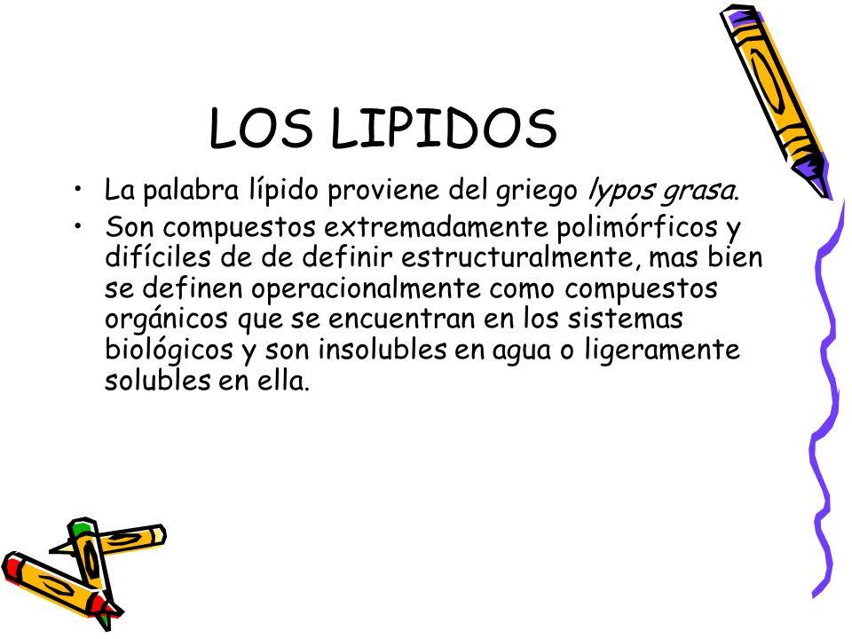 LOS LIPIDOS La palabra lípido proviene del griego lypos grasa. Son compuestos extremadamente polimórficos y difíciles de de definir estructuralmente,