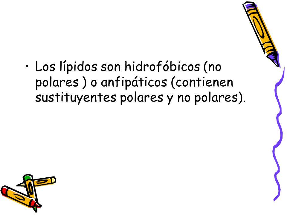 Los lípidos son hidrofóbicos (no polares ) o anfipáticos (contienen sustituyentes polares y no polares).