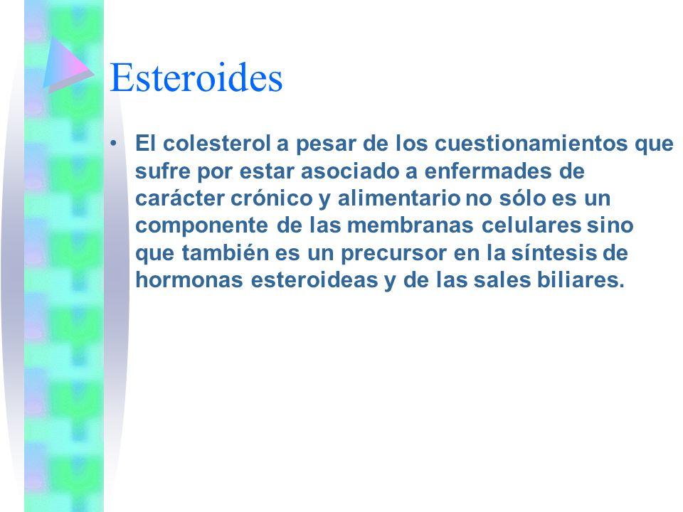 Esteroides El colesterol a pesar de los cuestionamientos que sufre por estar asociado a enfermades de carácter crónico y alimentario no sólo es un com