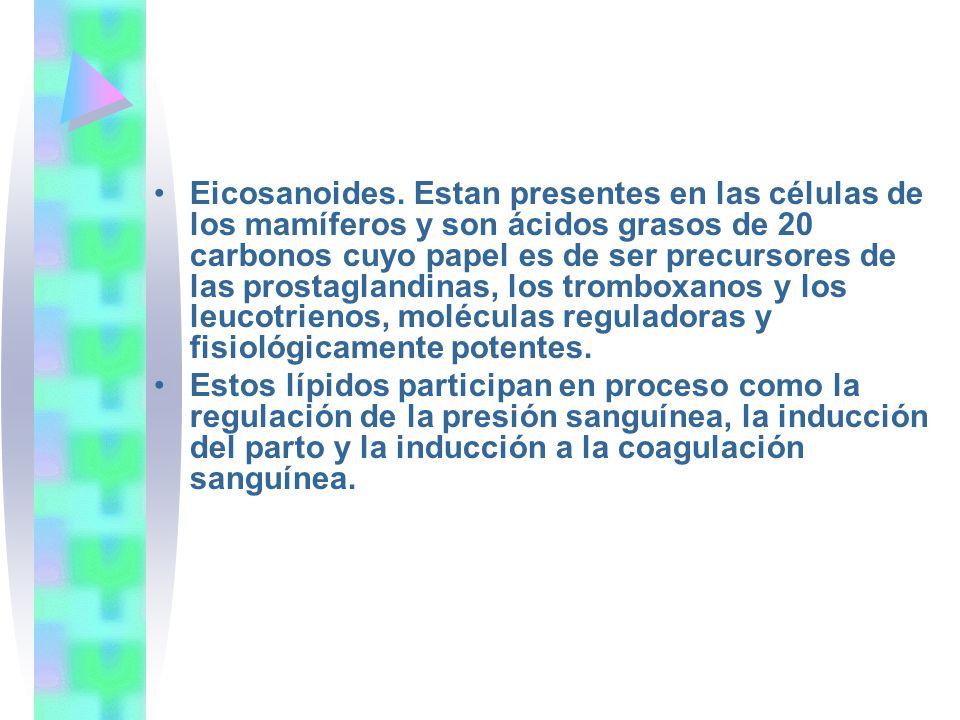 Eicosanoides. Estan presentes en las células de los mamíferos y son ácidos grasos de 20 carbonos cuyo papel es de ser precursores de las prostaglandin