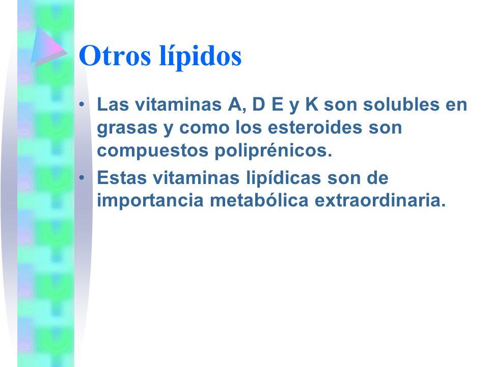 Otros lípidos Las vitaminas A, D E y K son solubles en grasas y como los esteroides son compuestos poliprénicos. Estas vitaminas lipídicas son de impo