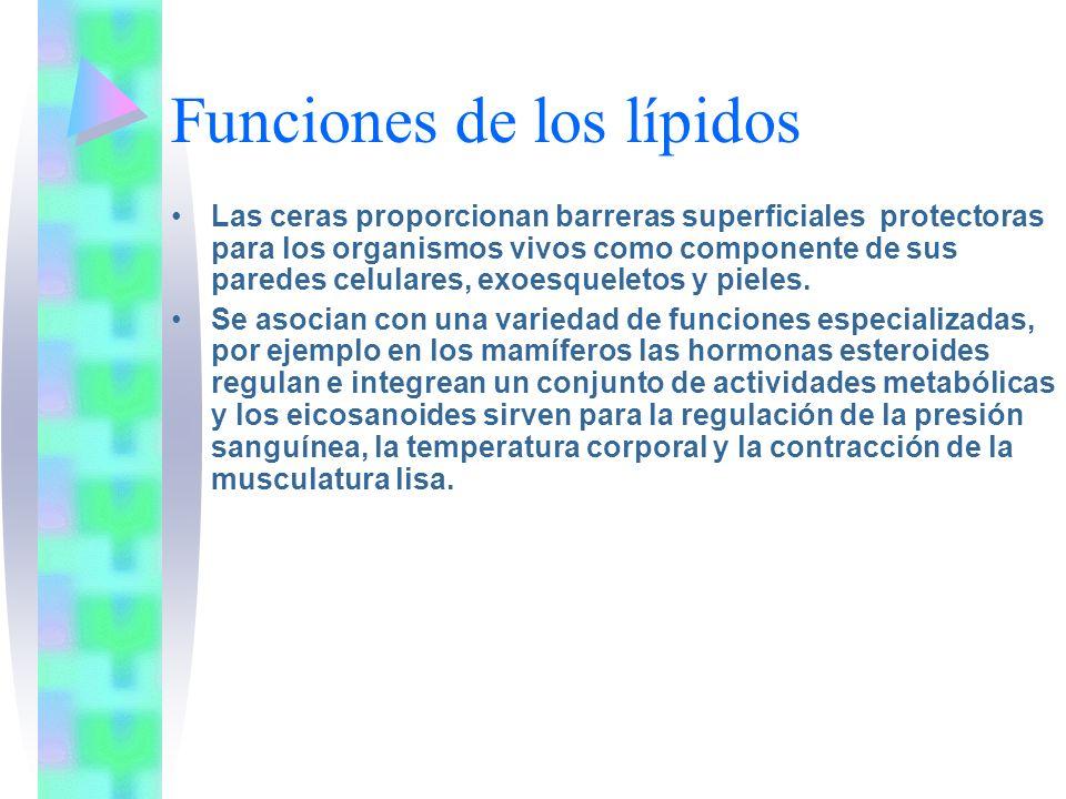 Funciones de los lípidos Las ceras proporcionan barreras superficiales protectoras para los organismos vivos como componente de sus paredes celulares,