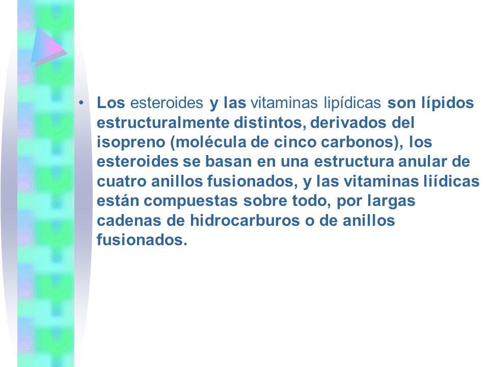 Los esteroides y las vitaminas lipídicas son lípidos estructuralmente distintos, derivados del isopreno (molécula de cinco carbonos), los esteroides s