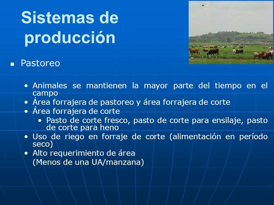 Sistemas de producción Pastoreo Animales se mantienen la mayor parte del tiempo en el campo Área forrajera de pastoreo y área forrajera de corte Área