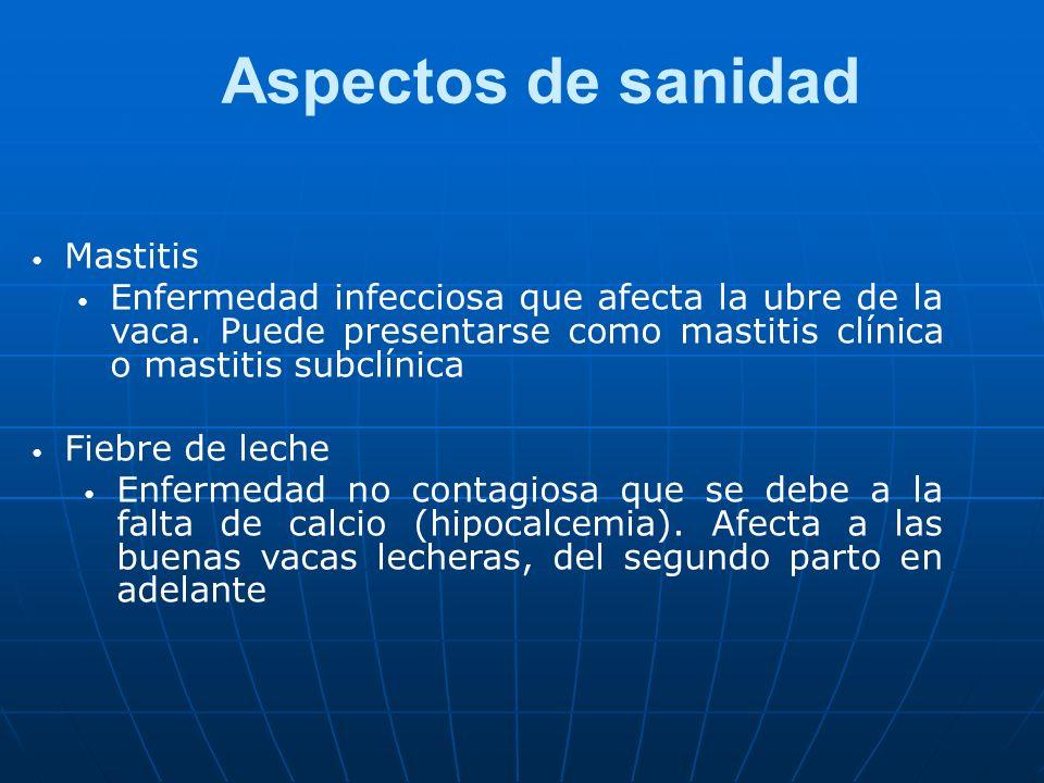 Aspectos de sanidad Mastitis Enfermedad infecciosa que afecta la ubre de la vaca. Puede presentarse como mastitis clínica o mastitis subclínica Fiebre