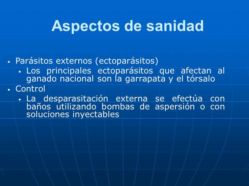 Aspectos de sanidad Parásitos externos (ectoparásitos) Los principales ectoparásitos que afectan al ganado nacional son la garrapata y el tórsalo Cont