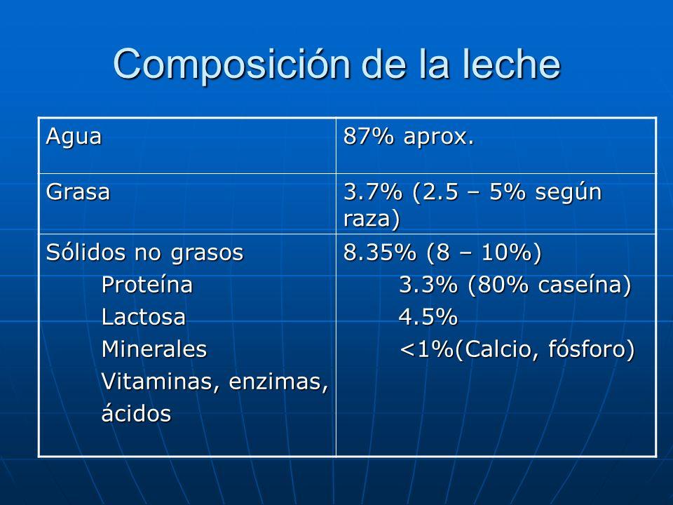 Composición de la leche Agua 87% aprox. Grasa 3.7% (2.5 – 5% según raza) Sólidos no grasos Proteína Proteína Lactosa Lactosa Minerales Minerales Vitam