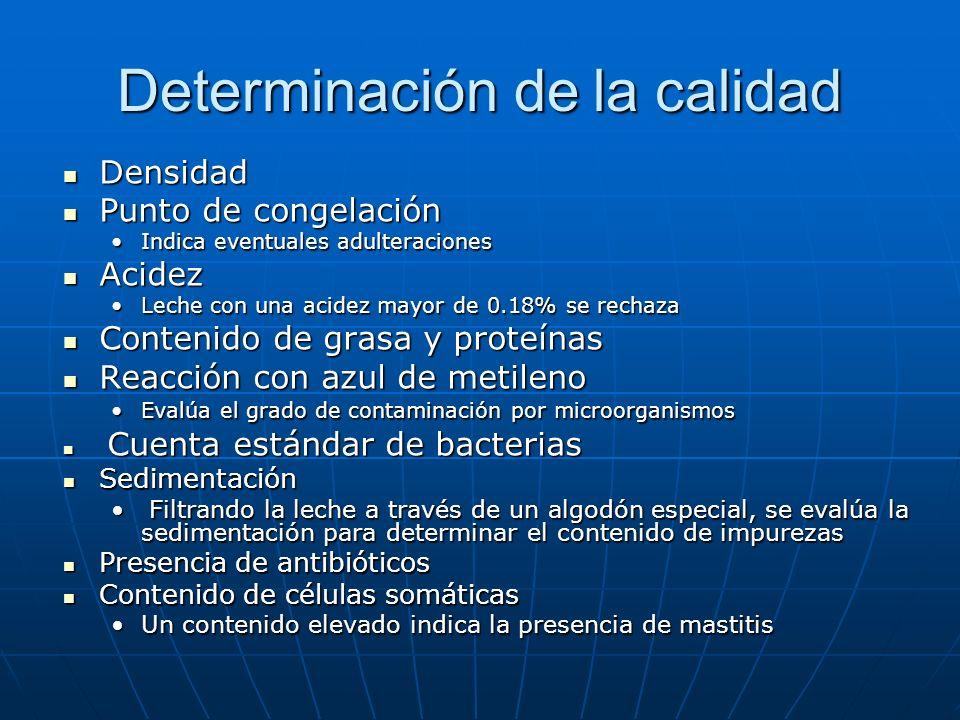Determinación de la calidad Densidad Densidad Punto de congelación Punto de congelación Indica eventuales adulteracionesIndica eventuales adulteraciones Acidez Acidez Leche con una acidez mayor de 0.18% se rechazaLeche con una acidez mayor de 0.18% se rechaza Contenido de grasa y proteínas Contenido de grasa y proteínas Reacción con azul de metileno Reacción con azul de metileno Evalúa el grado de contaminación por microorganismosEvalúa el grado de contaminación por microorganismos Cuenta estándar de bacterias Cuenta estándar de bacterias Sedimentación Sedimentación Filtrando la leche a través de un algodón especial, se evalúa la sedimentación para determinar el contenido de impurezas Filtrando la leche a través de un algodón especial, se evalúa la sedimentación para determinar el contenido de impurezas Presencia de antibióticos Presencia de antibióticos Contenido de células somáticas Contenido de células somáticas Un contenido elevado indica la presencia de mastitisUn contenido elevado indica la presencia de mastitis