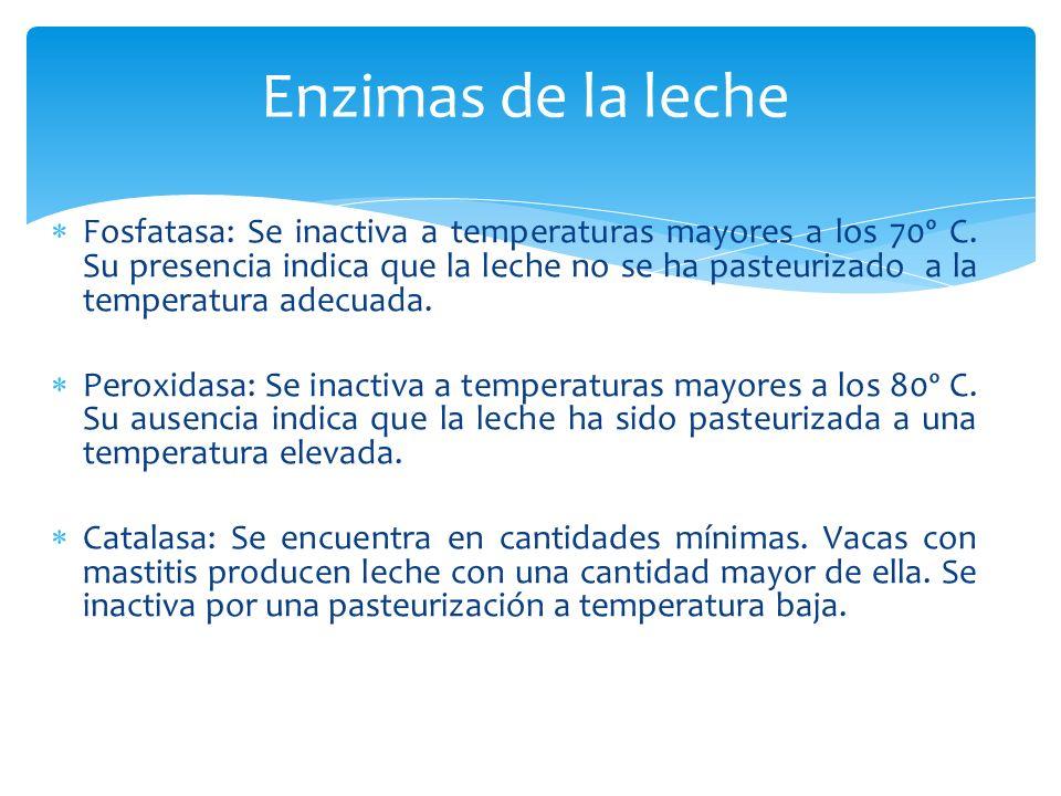 Fosfatasa: Se inactiva a temperaturas mayores a los 70º C. Su presencia indica que la leche no se ha pasteurizado a la temperatura adecuada. Peroxidas