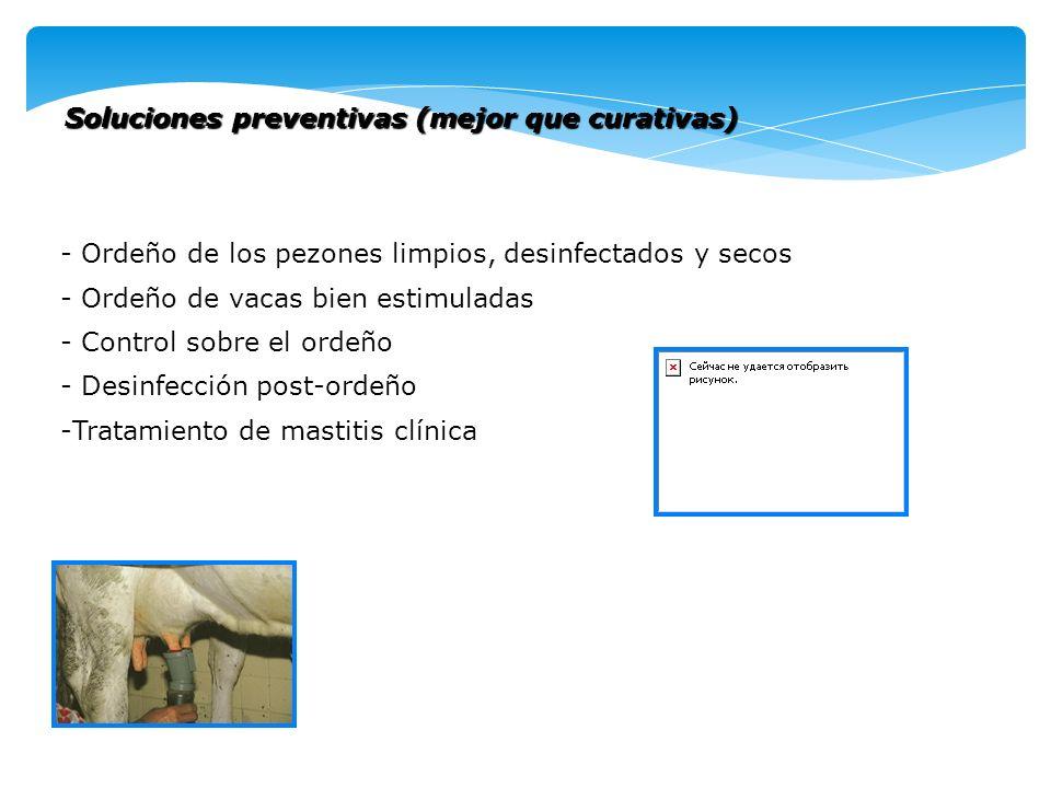Soluciones preventivas (mejor que curativas) - Ordeño de los pezones limpios, desinfectados y secos - Ordeño de vacas bien estimuladas - Control sobre