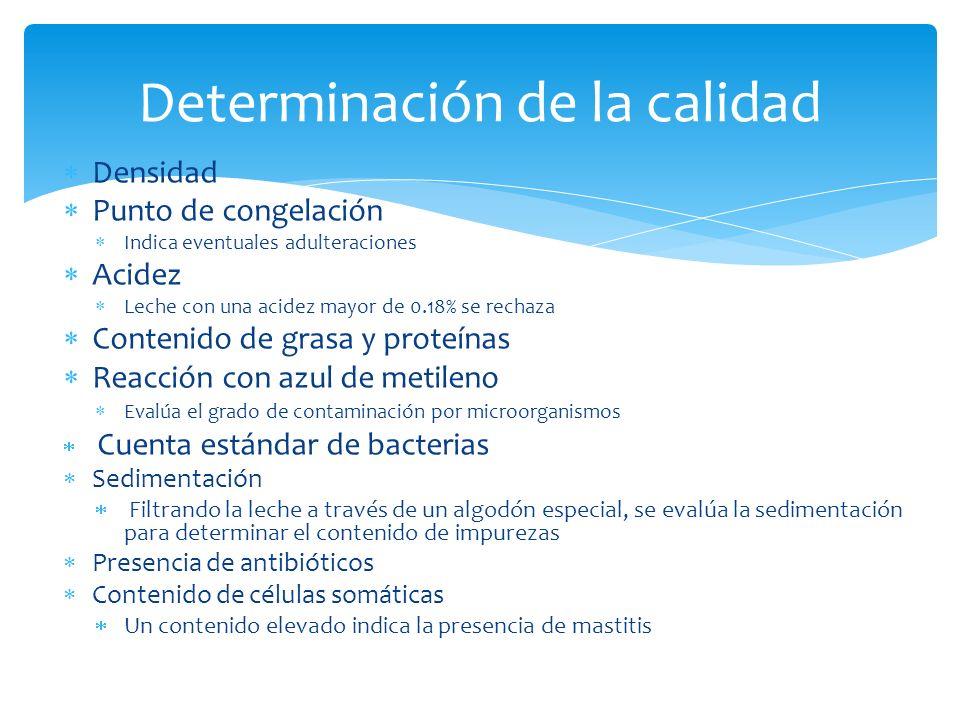 Densidad Punto de congelación Indica eventuales adulteraciones Acidez Leche con una acidez mayor de 0.18% se rechaza Contenido de grasa y proteínas Re