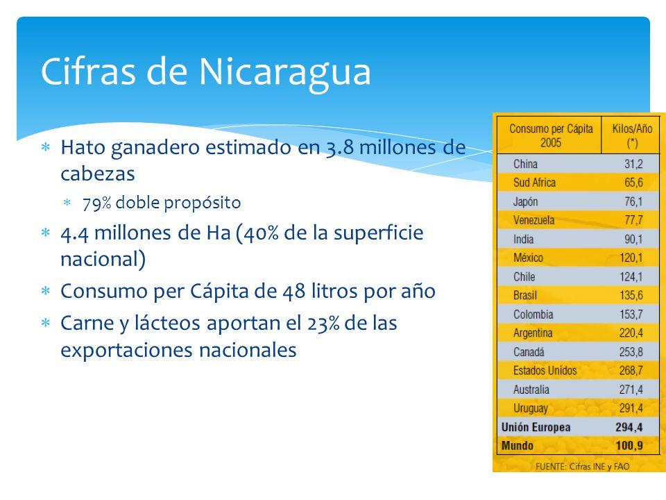 Hato ganadero estimado en 3.8 millones de cabezas 79% doble propósito 4.4 millones de Ha (40% de la superficie nacional) Consumo per Cápita de 48 litr
