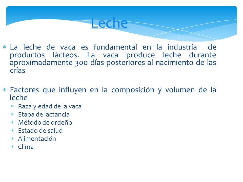 Densidad Punto de congelación Indica eventuales adulteraciones Acidez Leche con una acidez mayor de 0.18% se rechaza Contenido de grasa y proteínas Reacción con azul de metileno Evalúa el grado de contaminación por microorganismos Cuenta estándar de bacterias Sedimentación Filtrando la leche a través de un algodón especial, se evalúa la sedimentación para determinar el contenido de impurezas Presencia de antibióticos Contenido de células somáticas Un contenido elevado indica la presencia de mastitis Determinación de la calidad