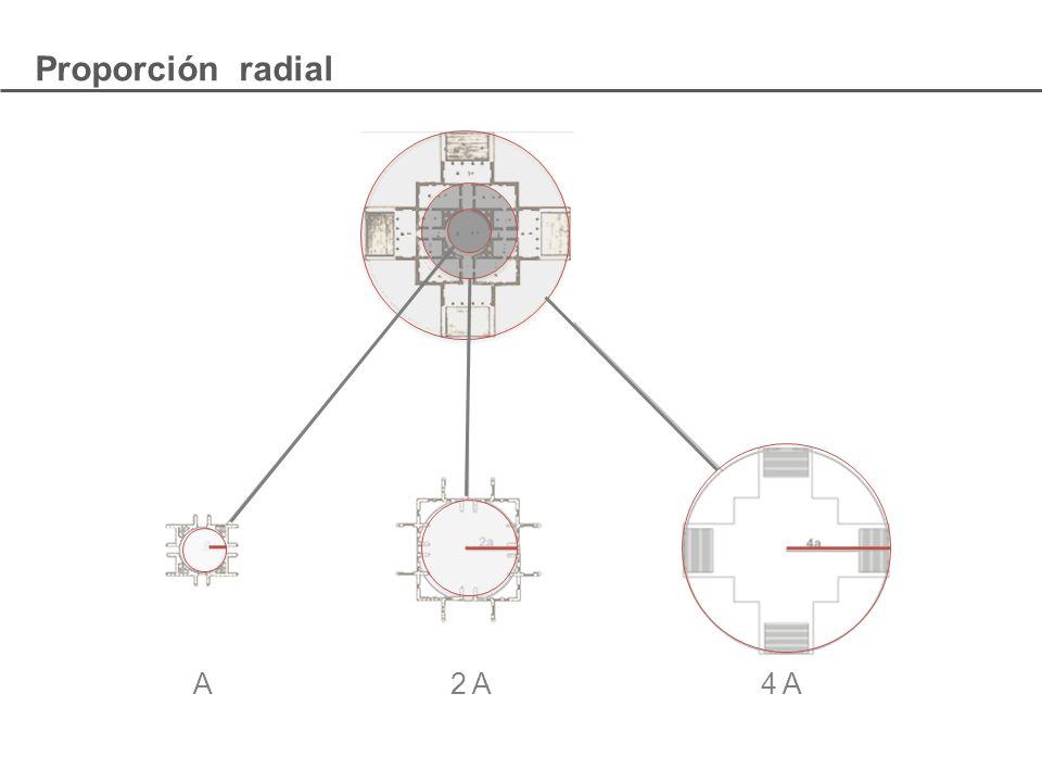 A 2 A 4 A Proporción radial