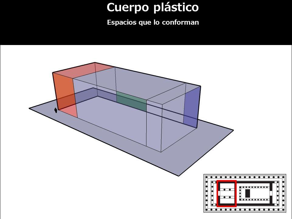 Cuerpo plástico Espacios que lo conforman