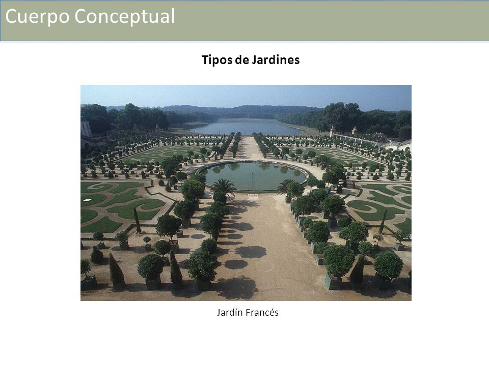 Características del jardín francés + La perspectiva + Su estructura + La forma de poda + El agua + La escala + La geometría Elementos que definen al Jardín francés: