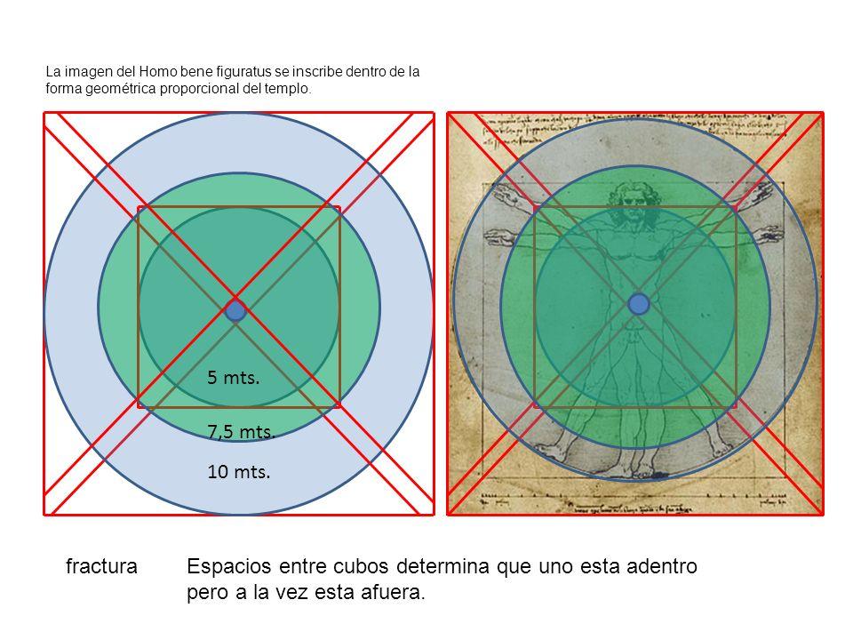 La imagen del Homo bene figuratus se inscribe dentro de la forma geométrica proporcional del templo. 5 mts. 10 mts. 7,5 mts. fracturaEspacios entre cu