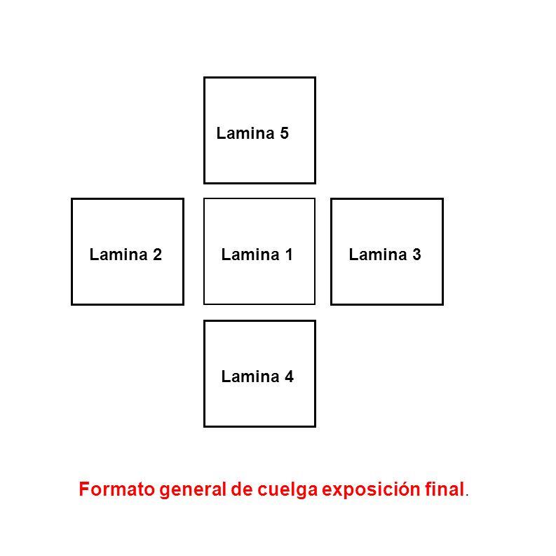 Formato general de cuelga exposición final. Lamina 1Lamina 2Lamina 3 Lamina 4 Lamina 5