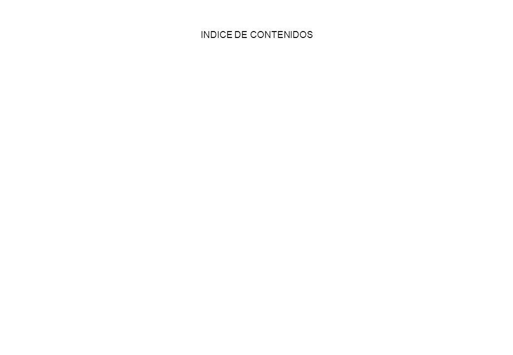 INDICE DE CONTENIDOS