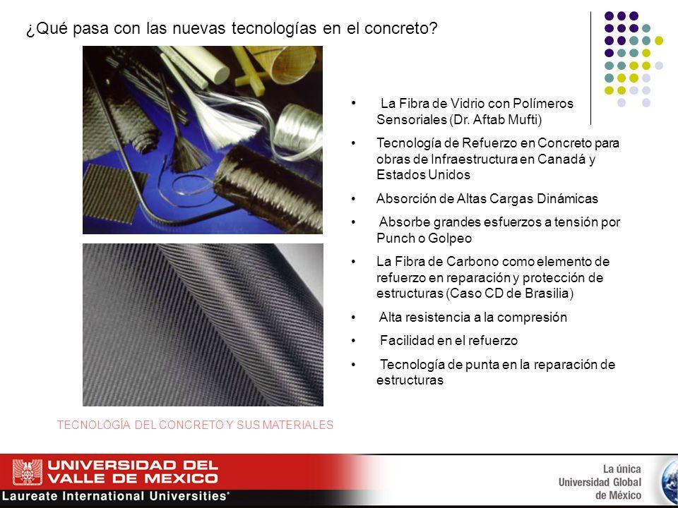 ¿Qué pasa con las nuevas tecnologías en el concreto? La Fibra de Vidrio con Polímeros Sensoriales (Dr. Aftab Mufti) Tecnología de Refuerzo en Concreto