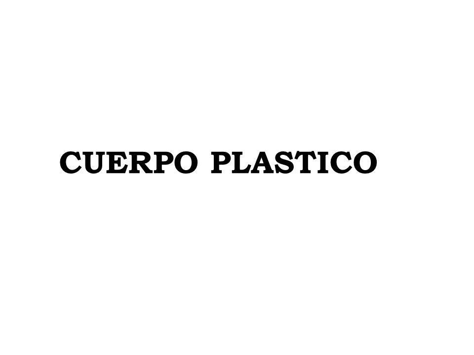 CUERPO PLASTICO