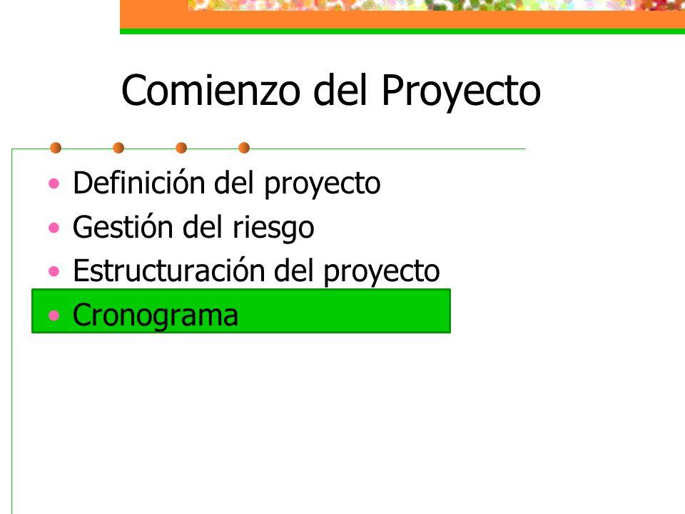 Comienzo del Proyecto Definición del proyecto Gestión del riesgo Estructuración del proyecto Cronograma