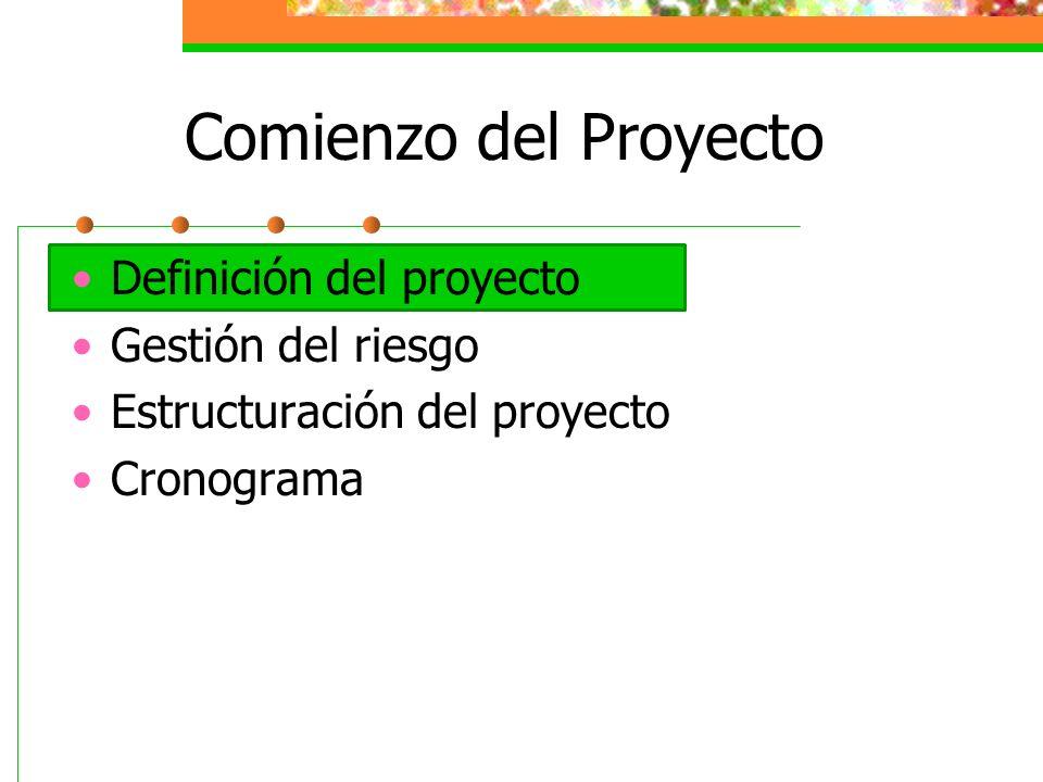 Definición del Proyecto Identificar los stakeholders Establecer los roles Director del Proyecto Equipo Clientes Sponsor (patrocinador) Reglas del Proyecto