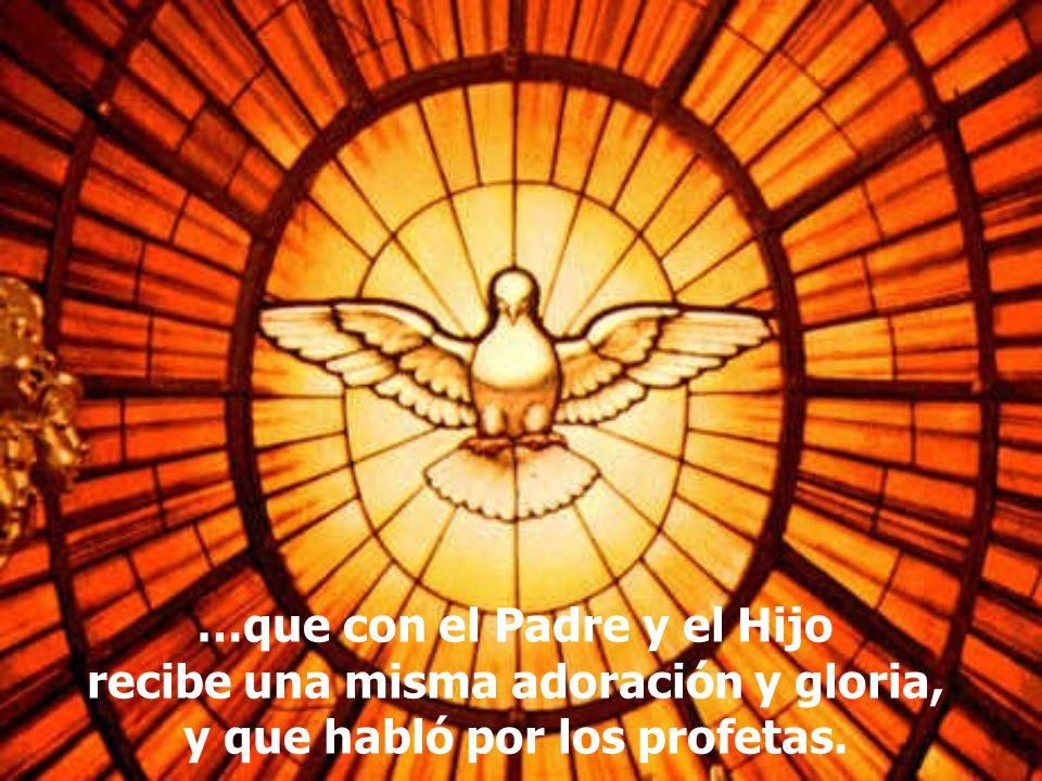 …que con el Padre y el Hijo recibe una misma adoración y gloria, y que habló por los profetas.