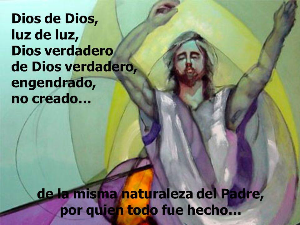 de la misma naturaleza del Padre, por quien todo fue hecho… Dios de Dios, luz de luz, Dios verdadero de Dios verdadero, engendrado, no creado…