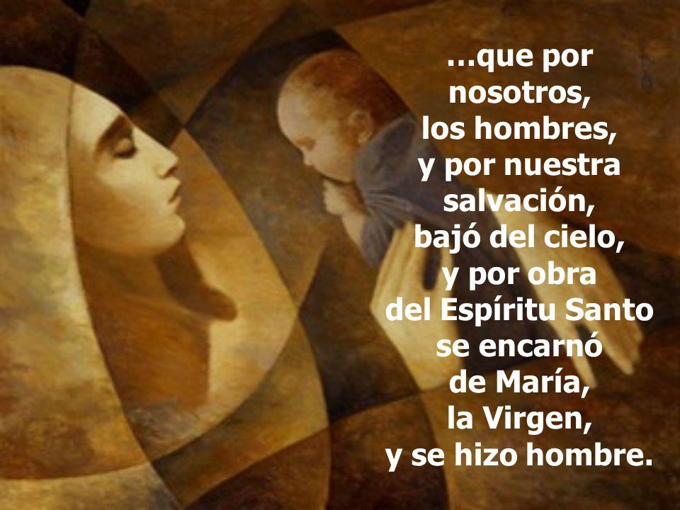 …que por nosotros, los hombres, y por nuestra salvación, bajó del cielo, y por obra del Espíritu Santo se encarnó de María, la Virgen, y se hizo hombr