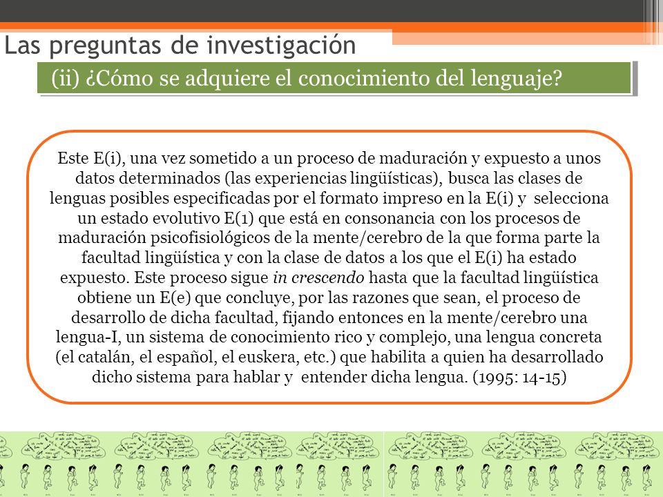 Este E(i), una vez sometido a un proceso de maduración y expuesto a unos datos determinados (las experiencias lingüísticas), busca las clases de lengu
